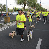 Pet Express Doggie Run 2012 Philippines. Jpg (83).JPG
