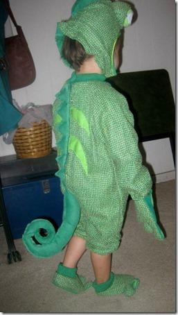 disfraz de camaleon (3)