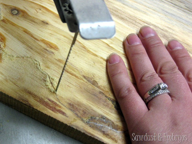 Using a Scroll Saw to Cut a State Plaque {Sawdust and Embryos}