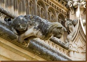 Toledo, san juan gargoyle cat