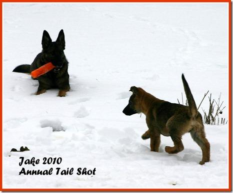 Jake 2010 Annual Tail Shot