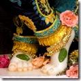 Krishna's lotus feet