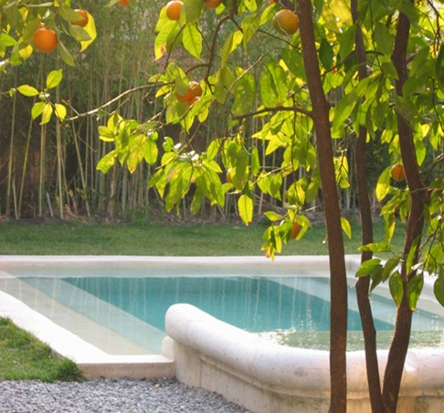 11-piscine-et-oranger