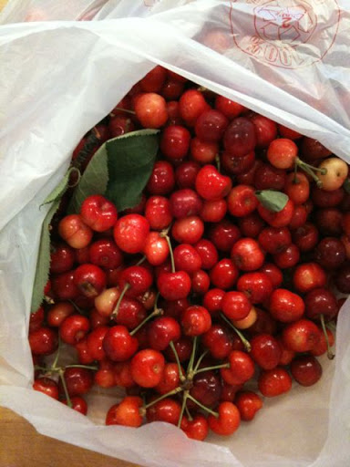 Washed cherries, ready to be jarred.
