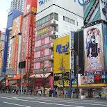 shopping street in akihabara in Akihabara, Tokyo, Japan