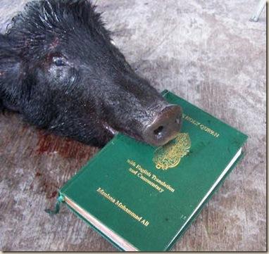 cerdo coran ateismo