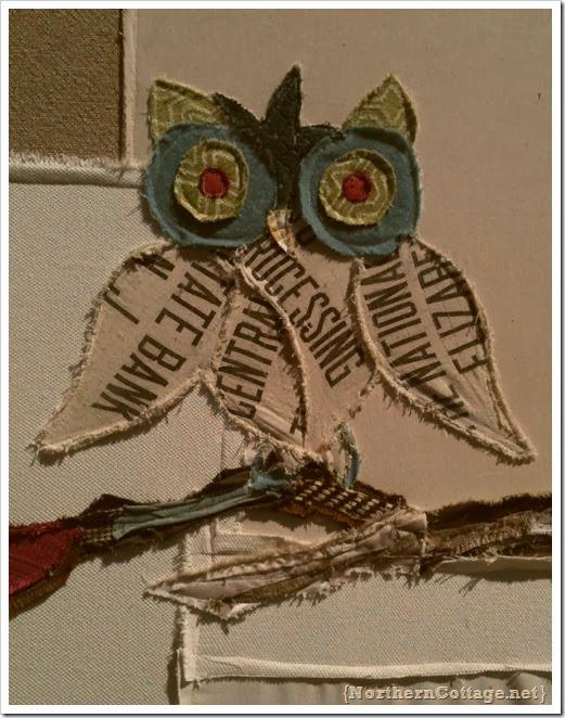 scrapy owl