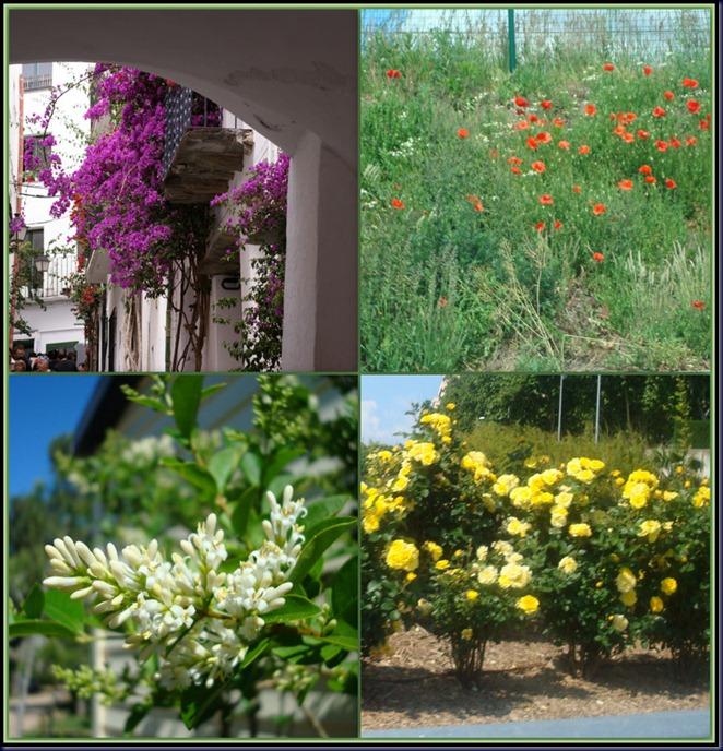 vakantie voorjaar Spanje2-1