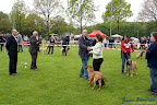 20100513-Bullmastiff-Clubmatch_30874.jpg