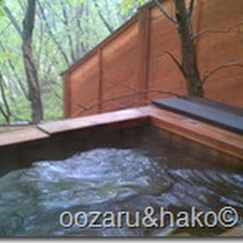 nikko aguas termales 温泉