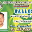 GALLOS 16.jpg