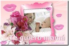 dia de la madre 14 febrero net 4 1 1