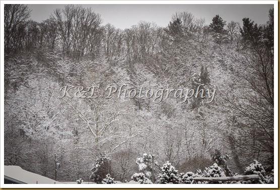 winter scene (1 of 1)-27
