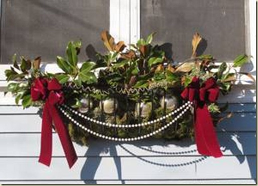 holiday window boxes - container gardening
