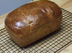 sprouted-kamut-bread 044