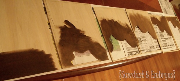 Staining Topography Artwork {Sawdust and Embryos}