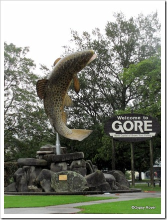 Gore, World Capital of Brown Trout.