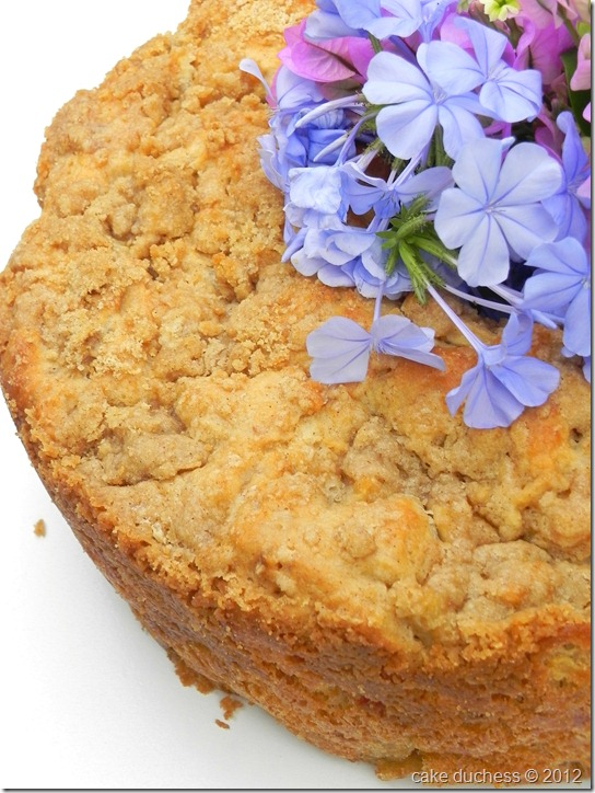 fresh-apple-coffeecake-4