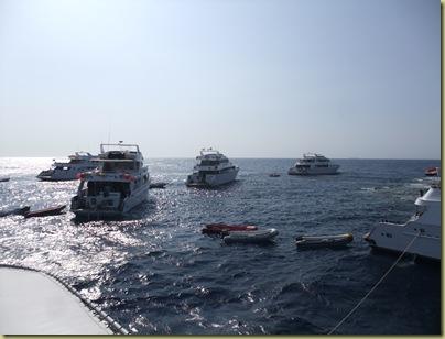 1 LBS DiveBoats