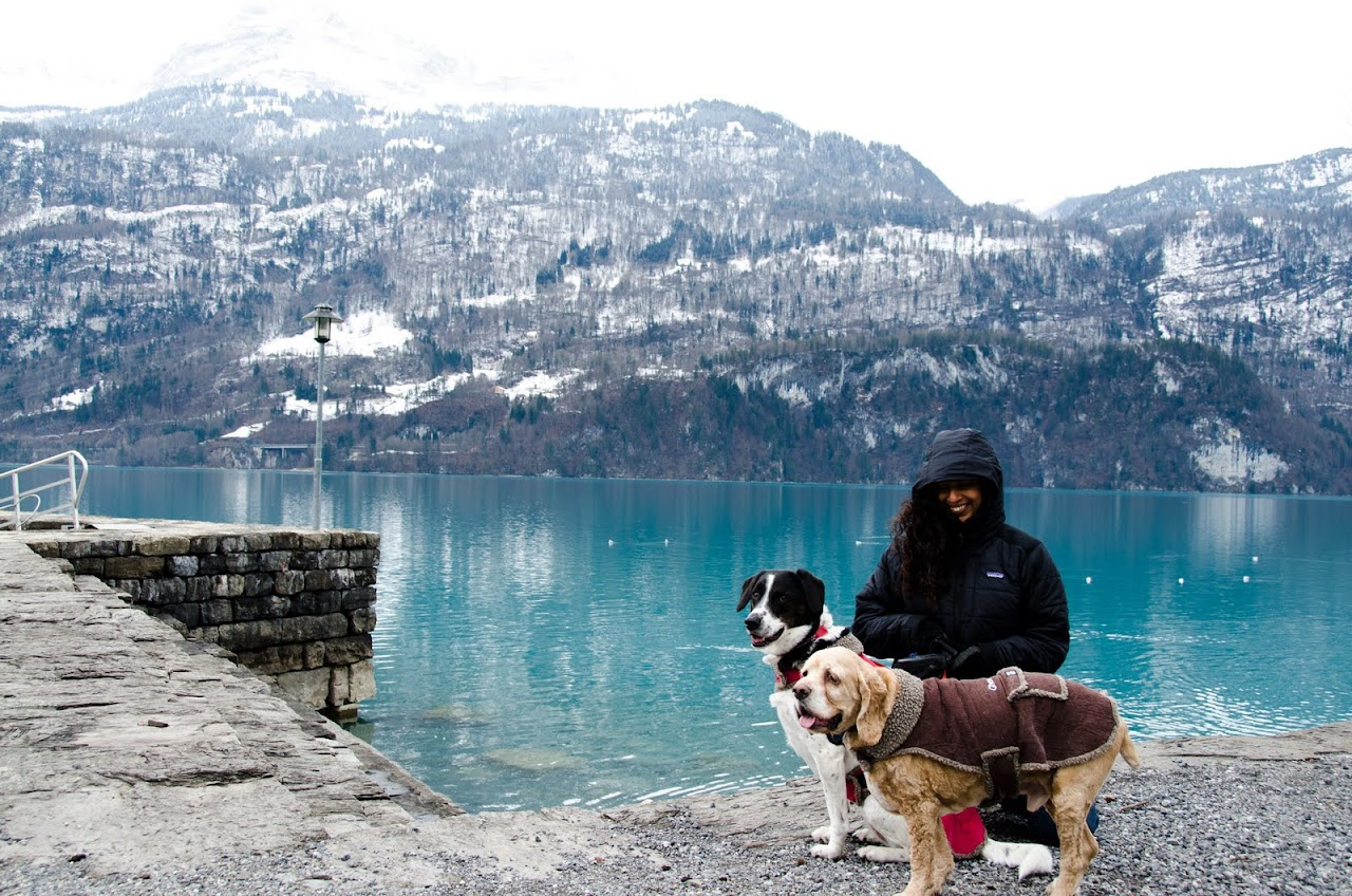 Chewy and Abby in Switzerland