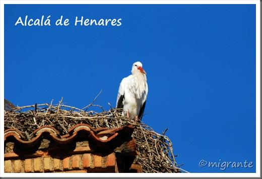 2011-12 - alcalá de henares