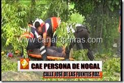 14 IMAG. CAE PERSONA DE NOGAL EN JOSE DE LAS FUENTES.mp4_000015548