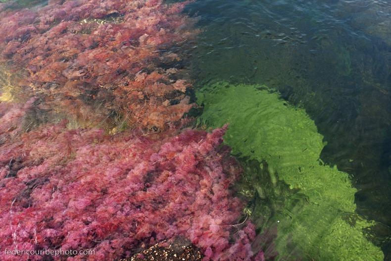 نهر الالوان الخمسة اجمل انهار