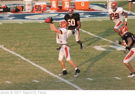 'WR Jordan Shipley' photo (c) 2011, Navin75 - license: http://creativecommons.org/licenses/by-sa/2.0/