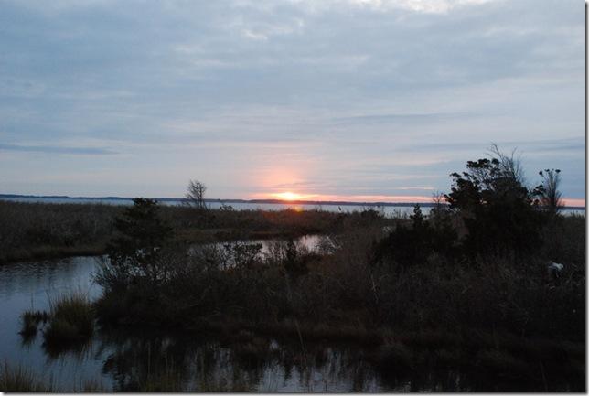 11-15-12 A Delaware Seashore State Park 029