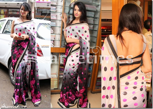 Diksha_Panth_Dual_Color_Saree
