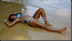 flognegras.blogspot (37)