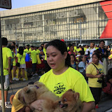 Pet Express Doggie Run 2012 Philippines. Jpg (123).JPG