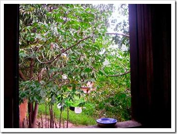 Janela da minha cozinha natureba na Chapada Diamatina (BA)