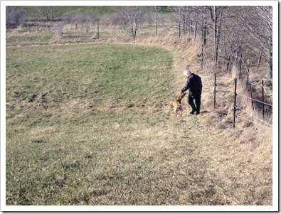 20120402_dogs_003