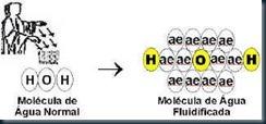 molécula_água