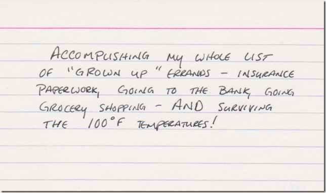 """Accomplishing my whole list of """"grown up"""" errands - insurance paperwork, going to the bank, grocery shopping - AND surviving the 100 F temperatures!"""