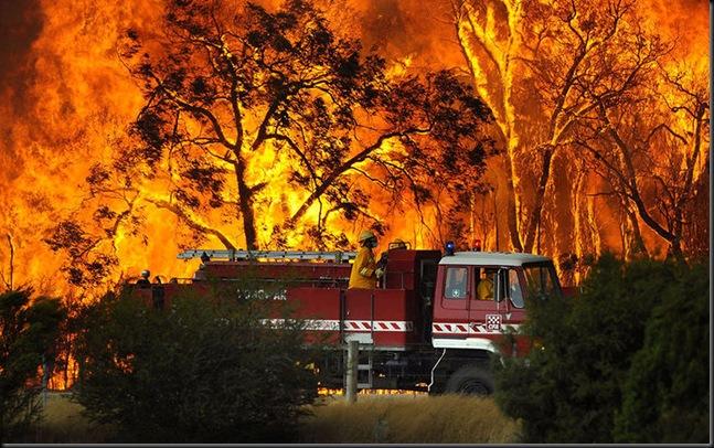 Aussie Fires