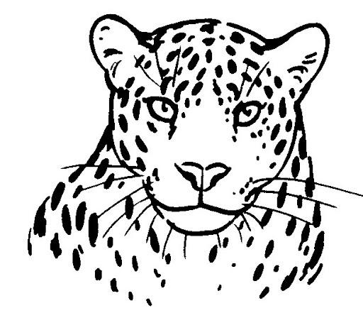 Leopardo para colorear e imprimir - Imagui