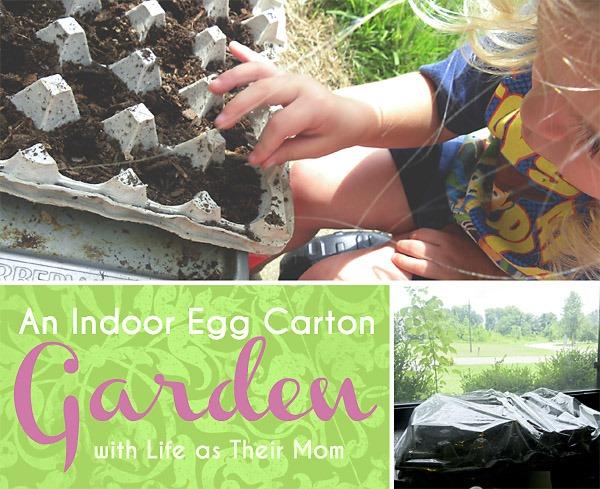 indoor egg carton garden - life as their mom