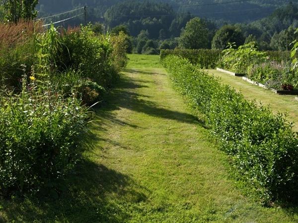 2012-08-05 Hagen på Møll (103)