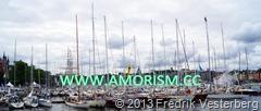 DSC03297.JPG ÅF Offshore race 2013. Segelbåtar. Med amorism.