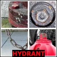 HYDRANT- Whats The Word Answers