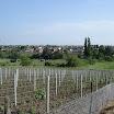 2008-obec-016.jpg