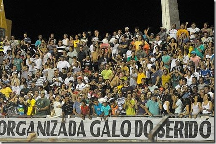 galo do serido