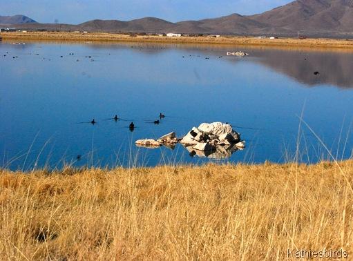 1. Wilcox lake-kab