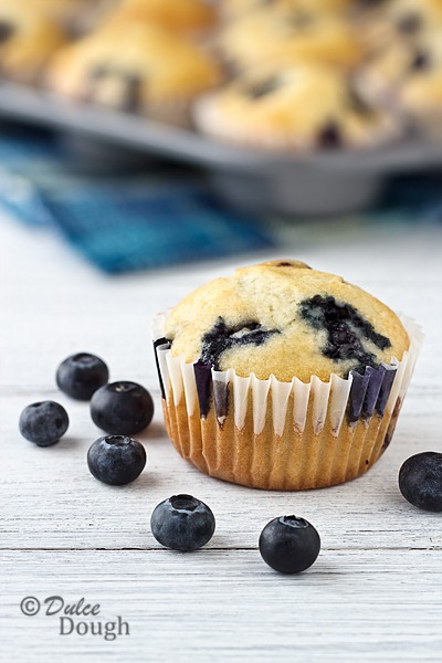 [Blueberry-Cream-Muffins-14.jpg]