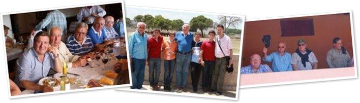 Ver Excursión a Tudela