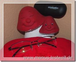 Brille omnioptics