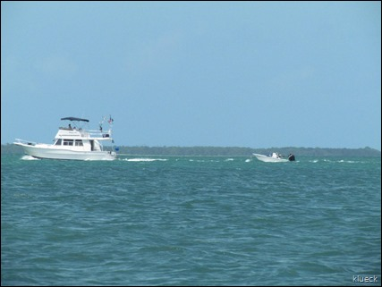 boat with toad