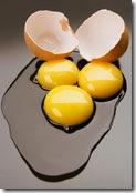 eggs for hair-2